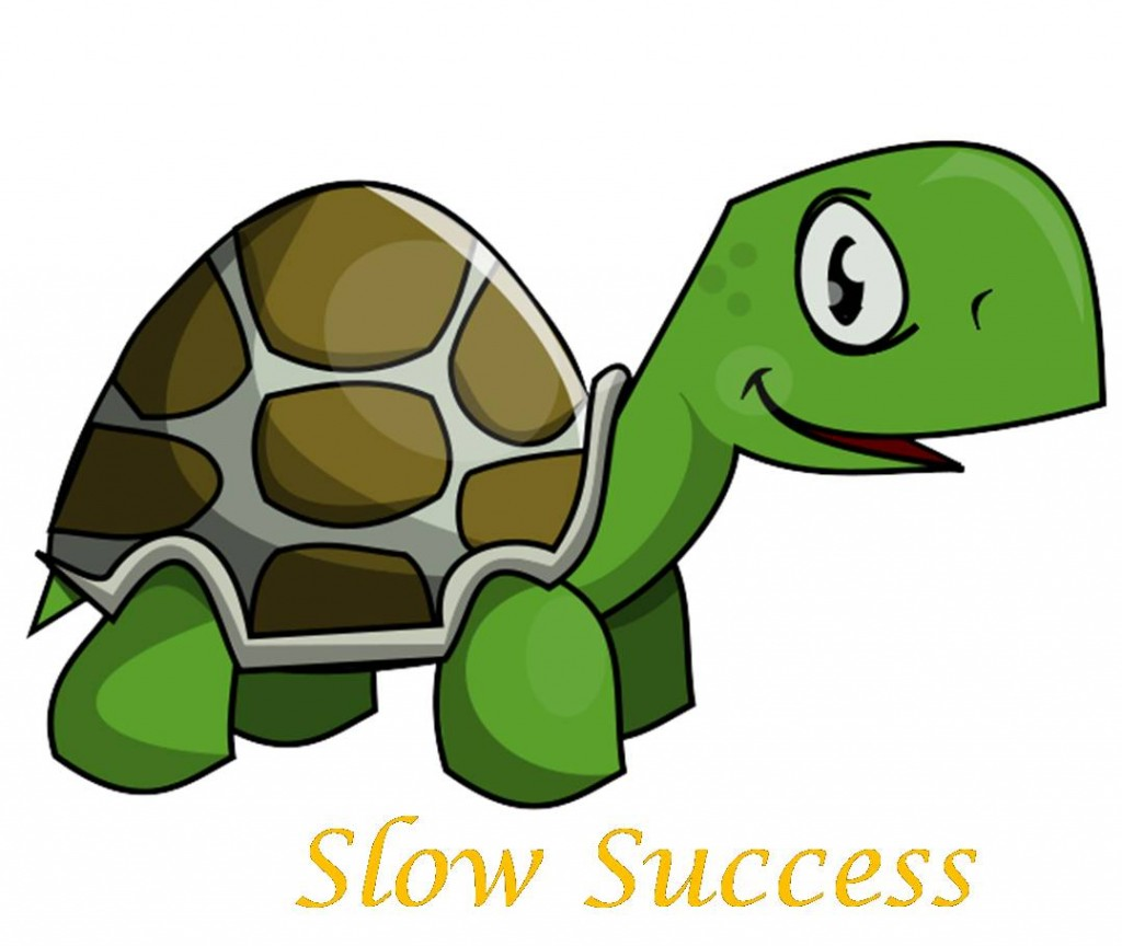 Slow Success - Turtle