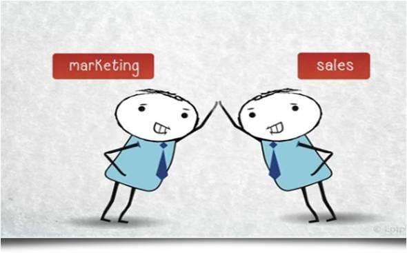 Marketing-Sales Team